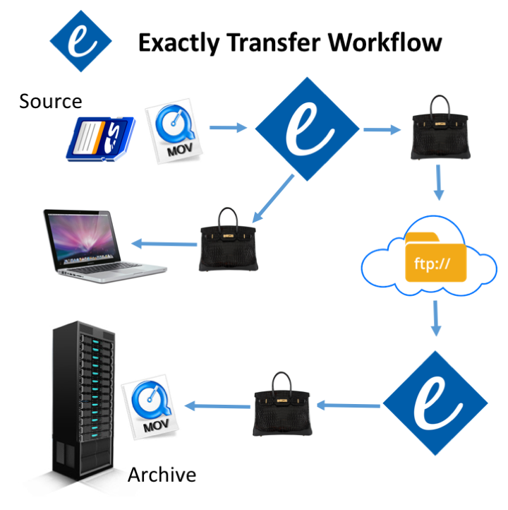 Exactly Transfer Workflow