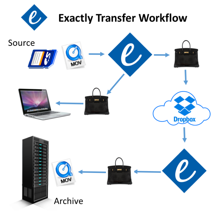 Exactly Transfer Workflow Dropbox